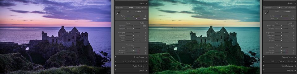Lightroom basic tint